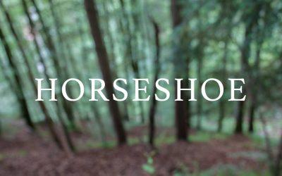 Horseshoetrail